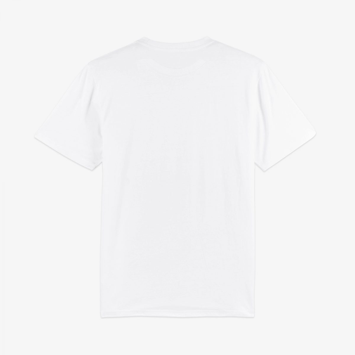 DS Heavy Classic White Tee Back